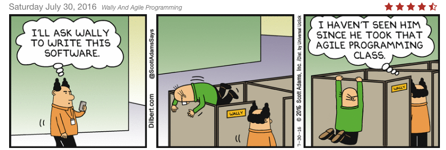Wally and Agile Programming